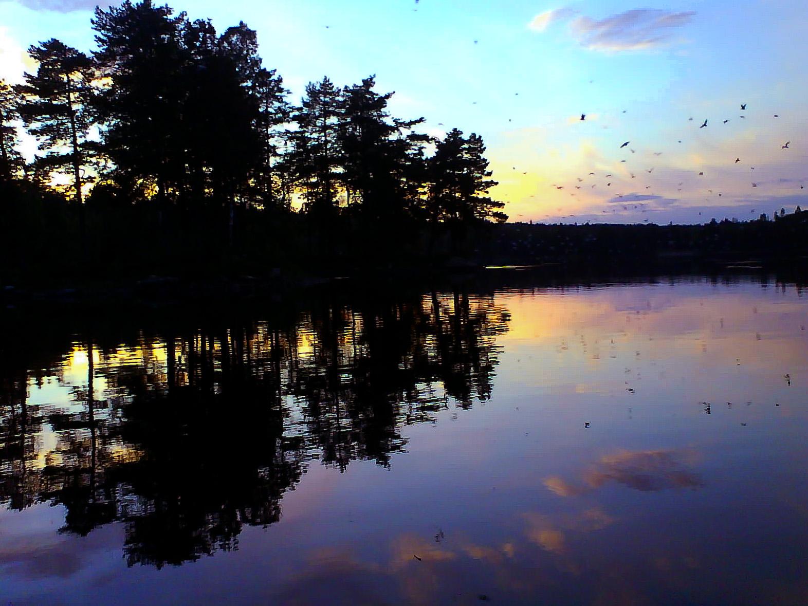 Måkeøya in lake Bæreia near Kongsvinger